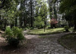 Foto: Općina Tivat